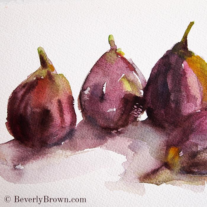 Fig Season - watercolor sketch by Beverly Brown