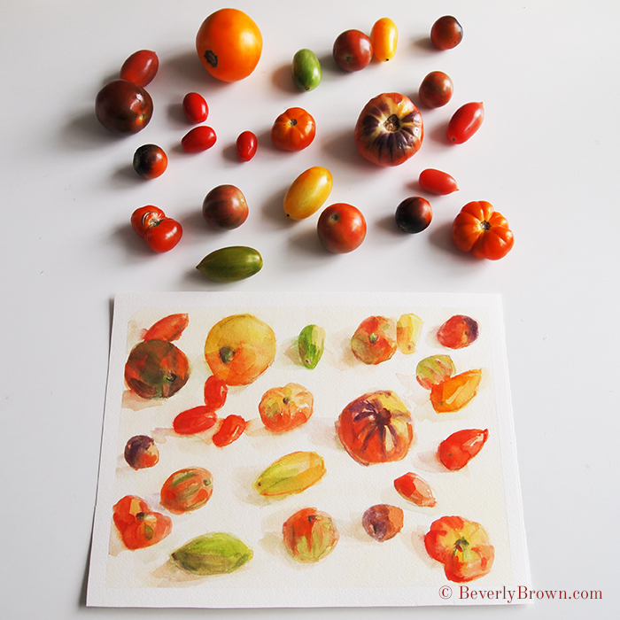 Quick heirloom tomato sketches in watercolor by artist Beverly Brown | www.beverlybrown.com