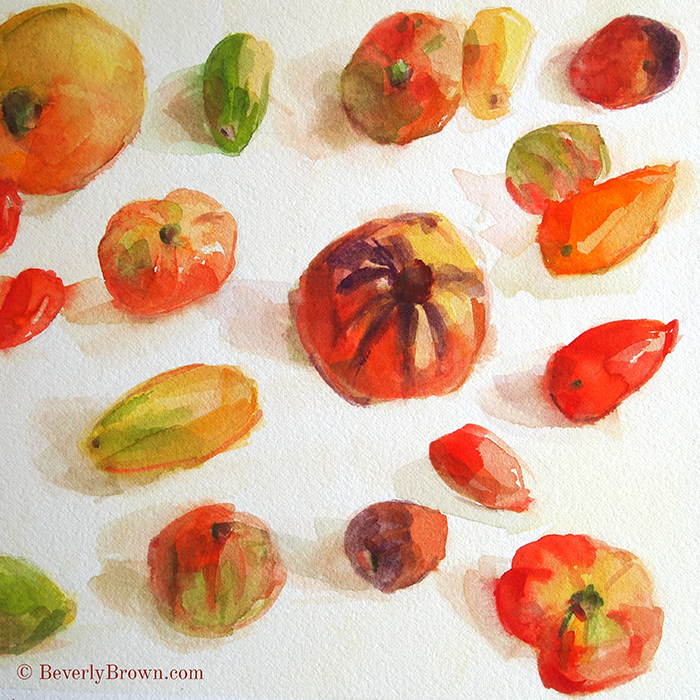 Quick heirloom tomato sketches in watercolor, by artist Beverly Brown. | www.beverlybrown.com